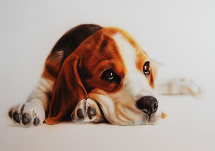 pet portrait painting of dog